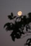 Měsíc - autor: Jan Drahokoupil
