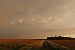 Podvečerní oblaky mamma - autor: Jan Drahokoupil