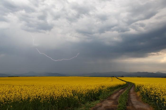 CC blesk nad řepkovými poli - autor: Jan Drahokoupil