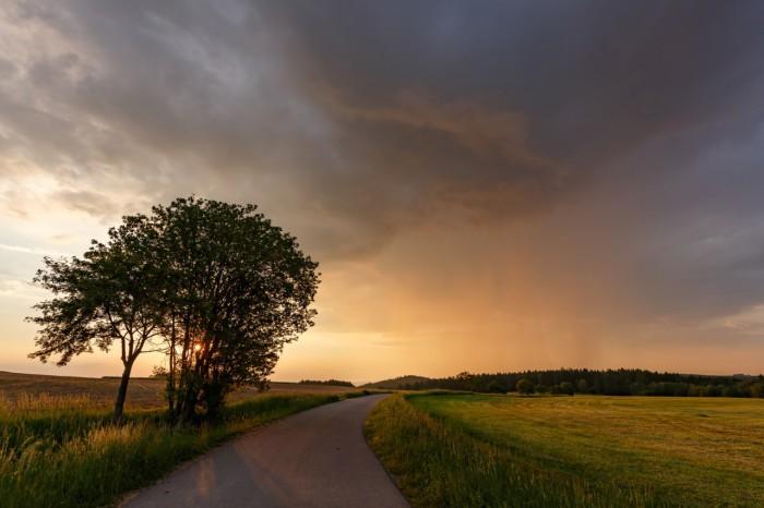 Západovka se stromem - autor: Jan Drahokoupil