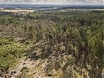 Lesní polom - autor: Lukáš Ronge