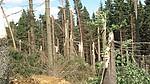 Škody způsobené přechodem bouře z22.6. - autor: Lukáš Ronge