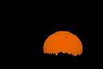 Slunce svenuší - autor: Lukáš Ronge