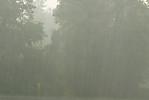 Velmi hustý déšť skrupobitím - autor: