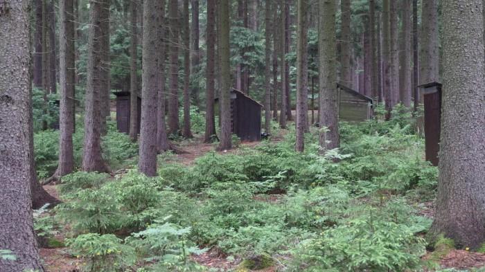 Lesní latríny - autor: Tomáš Prouza