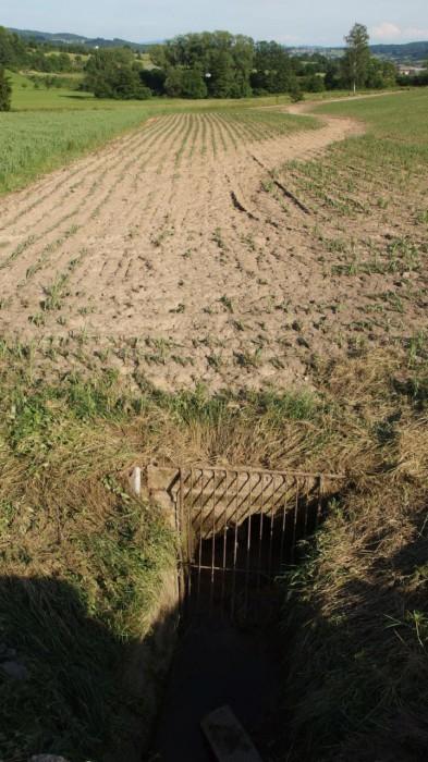 Pole pod ucpaným propustkem - autor: Tomáš Prouza