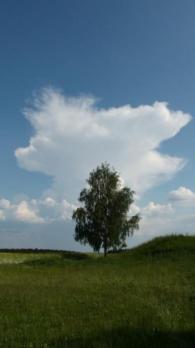 Odpolední izolovaná bouřka - autor: Tomáš Prouza