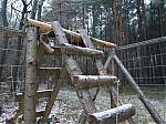 Schody po mrznoucím dešti - autor: Michal Janoušek