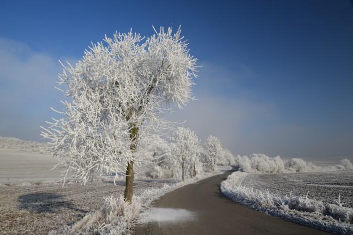 Zimní silnice - autor: Michal Janoušek