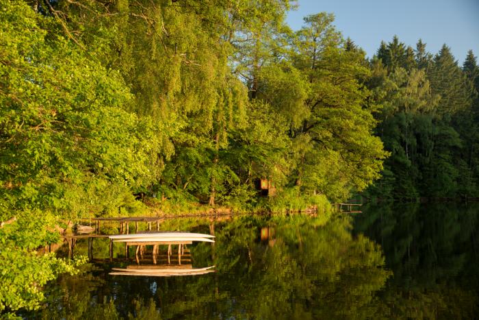 Nádherná kombinace vody a lesu - autor: Michal Janoušek