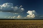 rostoucí cumulonimbus sokolní konvekcí - autor: Tomáš Novotný