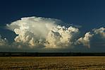 cumulonimbus vpodvečerním světle - autor: Tomáš Novotný