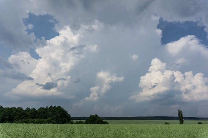 Čerstvý cumulonimbus  - autor: Luboš Opalecký