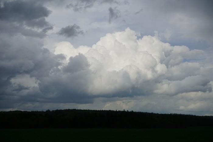 Cumulus před bouřkou - autor: Luboš Opalecký