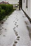 Tohle není zimní fotka :-) - autor: Dagmar Müllerová
