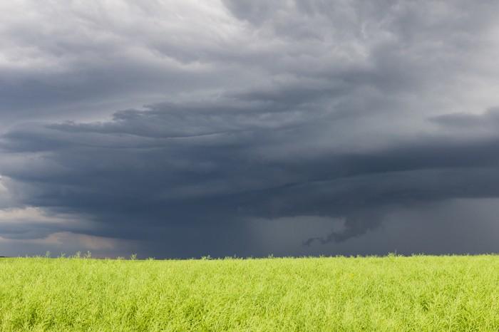 Nasávání do bouřky - autor: Dagmar Müllerová