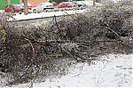 Škody po ledovce  - autor: Lukáš Větříšek