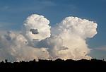 Vznikající bouřkový mrak spřistávajícím letadlem - autor: