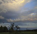 Večerní obloha - autor: Tomáš Chlíbec