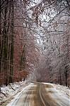 Les mezi Rychtářovem a Stunicemi - autor: Jan Švarc