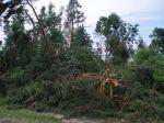 Poničený les umotorestu sv.Václava nad Podhořanami - autor: David Rýva
